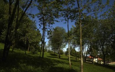 Il vasto parco naturale e i campi coltivati